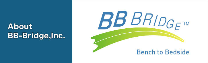 About BB-Bridge,Inc.